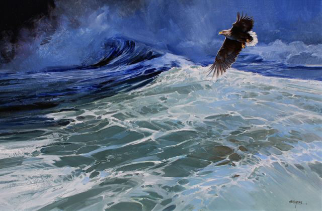 Eagle by Alan B Hayman