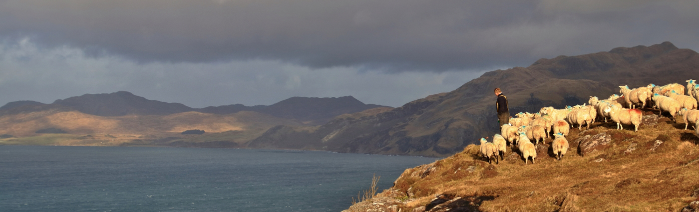 View From Drimnin over Loch Sunart towards Ardnamurchan