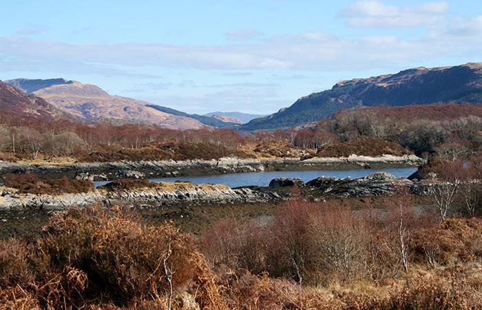View from Doirlinn