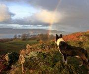 Herding Rainbows